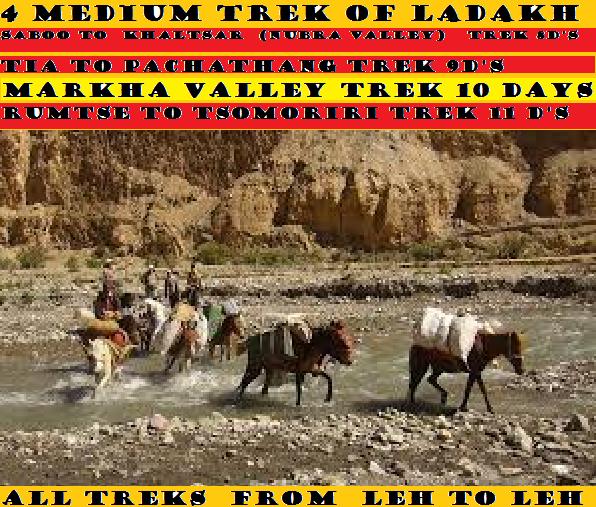 4 MEDIUM TREK IN LADAKH